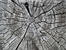 Old and cracked oak beam Royalty Free Stock Photography