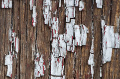 Old cracked paint on boards Stock Images
