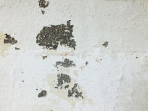 Old cracked paint concrete wall texture background close up Stock Photo