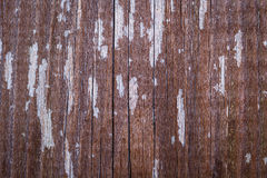 Old cracked paint pattern on wooden background. Royalty Free Stock Photo