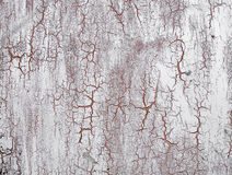 Old cracked paint on the wall. Grunge texture Royalty Free Stock Photography