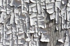Old cracked paint on wood texture Royalty Free Stock Image