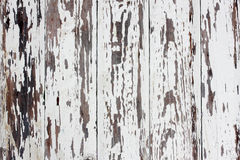 Old cracked planks Royalty Free Stock Image