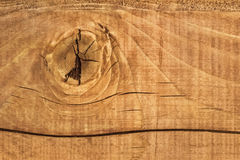 Old Cracked Rough Textured White Pine Plank With Knot. White Pine plank, with wood knot and lateral cracks Royalty Free Stock Image