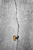 Old Cracked Wall with Nail Royalty Free Stock Photography