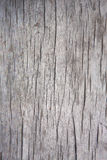 Old cracked wood background Royalty Free Stock Images