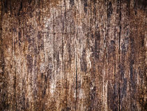 Old cracked wood background Stock Image