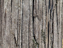 Old cracked wood Royalty Free Stock Photo