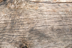 Old cracked wood grain texture Stock Photo