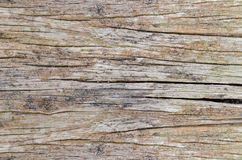 Old cracked wood grain texture background Stock Image