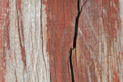 Old cracked wood texture Stock Photography