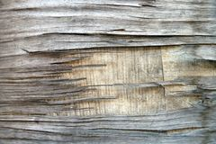 Old cracked wood Royalty Free Stock Photos