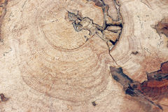 Old cracked wood texture. Picture of an old cracked wood background Royalty Free Stock Images