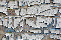 Old cracked wooden door background Royalty Free Stock Image