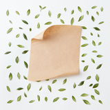 Old craft paper Royalty Free Stock Image