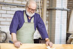 Old craftsperson with shirt and apron holding plank to lay it on the floor of the garage. Close up portrait of old craftsperson in glasses with shirt and apron stock images