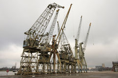 Old cranes in the port of Antwerp Royalty Free Stock Photography