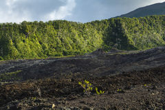 Old crater of Fournaise volcano at Reunion Island Royalty Free Stock Photos