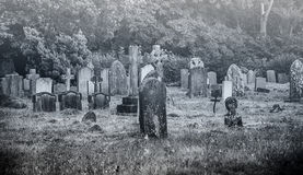 Old creepy cemetery royalty free stock image