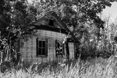 Old Creepy House. A black and white image of an old abandoned house over run with trees Royalty Free Stock Photo