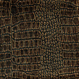 Old crocodile leather Royalty Free Stock Images