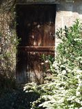 Old castle lion`s back door. An old crumbling forgotten castle, in the middle of nowhere still keeps an intact wooden door with a silver lion emblazoned in it`s royalty free stock photo