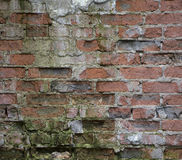 Old crumbling wall of red brick Royalty Free Stock Photos