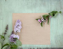 Old crumpled paper with purple flowers on grunge background Stock Image