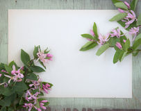 Old crumpled paper with purple flowers on grunge background Stock Photo