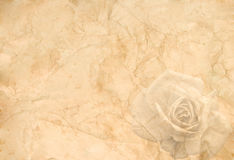Old crumpled paper with a rose. Abstract vintage background (old crumpled paper with a rose in the corner Stock Images