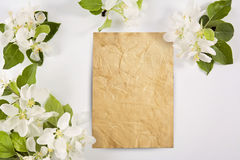 Old crumpled paper with white flowers Stock Images
