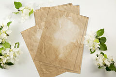 Old crumpled paper with white flowers Royalty Free Stock Images