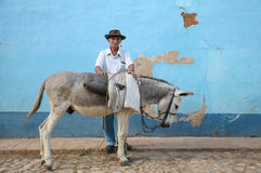 Old Cuban man and donkey Royalty Free Stock Photo