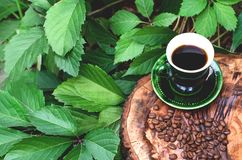 A cup of coffee with grains on the nature. stock photo