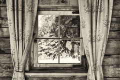 Old curtains Stock Image