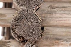 Old cut logs. Texture wood Stock Photos