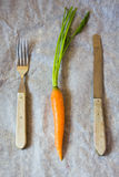 Old cutlery and carrot Royalty Free Stock Photography