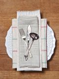 Old cutlery setting Royalty Free Stock Photography