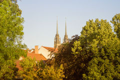 Old czech town Brno through green trees with gradient treatment Stock Photography