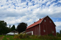 Old Dairy Barn. Old red Dairy farm barn Royalty Free Stock Photo