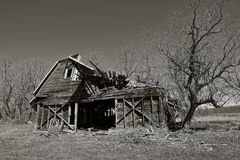 Crumbling old dairy barn. An old dairy barn is in a state of deterioration and is crumbling to the ground Royalty Free Stock Photo