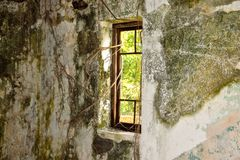 Old damage window with banyan toots in a dark room royalty free stock photos