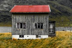 Old damaged facade of a wooden house in the village Vinstad at the coast on Lofoten Islands in Norway. The house is weathered and abandoned with a red roof. It royalty free stock images