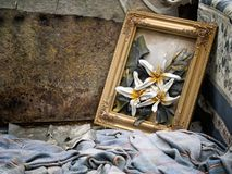 Beauty amongst the rubbish. Fly tipping nostalgia. Royalty Free Stock Image