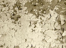 Old damaged paint on a concrete wall - sepia Royalty Free Stock Photography