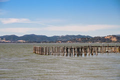 Old damaged sea side pier pilings Stock Photography