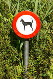 Old damaged sign in the bushes - dogs forbidden Stock Photo