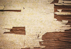 Old Damaged Wall or Reed Royalty Free Stock Photo