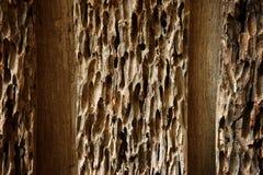 Old damaged wood Stock Photography