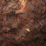 Old damp wood texture Stock Photography